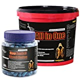 All in One 2600g Himbeergeschmack + Anabol Blood Amino! Whey-Protein Kohlenhydrat-Mix