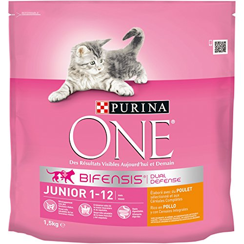 purina-one-chat-junior-croquettes-pour-chaton-poulet-cereales-completes-15-kg-lot-de-6-9-kg