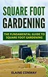 Square Foot Gardening: The Fundamental Guide to Square Foot Gardening (English Edition)