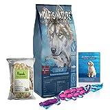 Wolf's Nature Getreidefreies Trockenfutter für Welpen aus Norwegen Junior Fjord-Lachs (8 kg + Gratis Buch, Snack, Spielzeug)