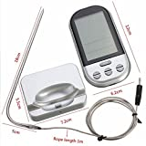 Best Digital Meat Thermometer Wirelesses - Ocamo Wireless Barbecue Thermometer Long Range Digital Smoker Review