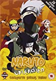 Naruto Unleashed - Complete Series 3 [DVD]