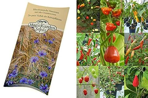 Kit de graines: 'Rares graines de piment fort', 9 variétés de piment relativement inconnues avec des arômes exceptionnels, dans emballage-cadeau