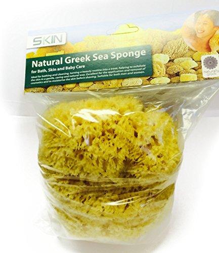 skinapeel-naturliche-honeycomb-honey-comb-hippospongia-communis-seeschwamm-natur-oder-gebleicht-gelb