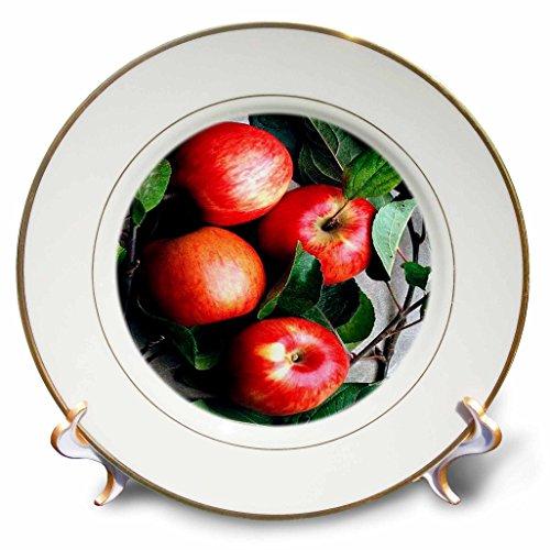 Platten Apple Dekorativen (3drose CP _ 765_ 1apple-porcelain Teller, 20,3cm)