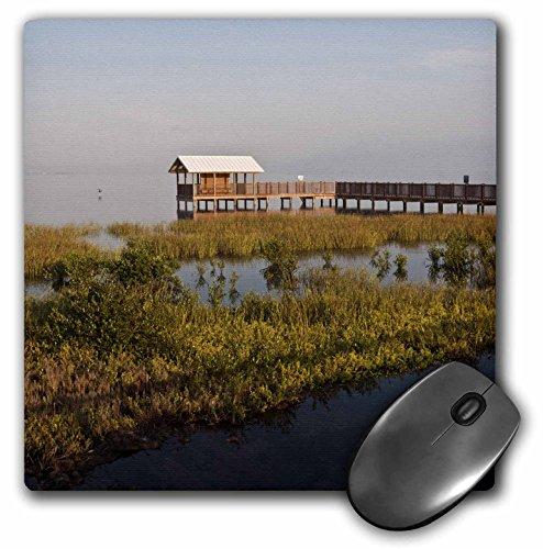 Danita Delimont - Texas - South Padre Island Birding Nature Center, Texas, USA - US44 LDI0629 - Larry Ditto - MousePad