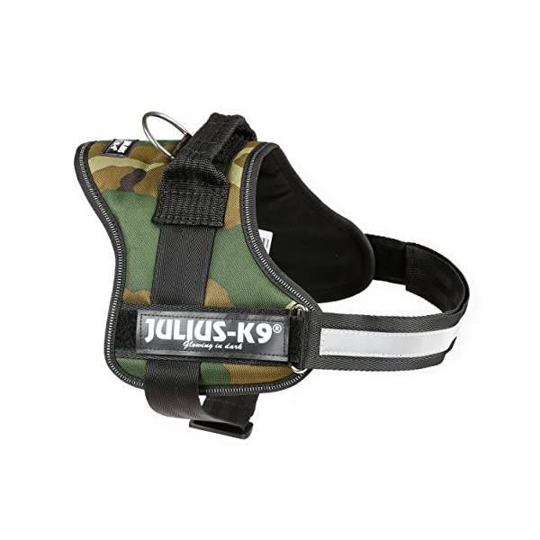 Julius-K9, 162M-BB1, Powerharness 4