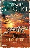 Junigewitter: Roman bei Amazon kaufen