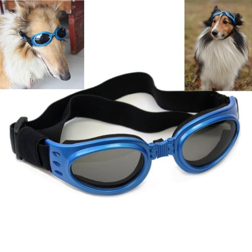 Namsan Blau gerahmt Hundewelpen UV-Schutzbrillen Sonnenbrillen Brillen Pet Sun Glasses, Halb