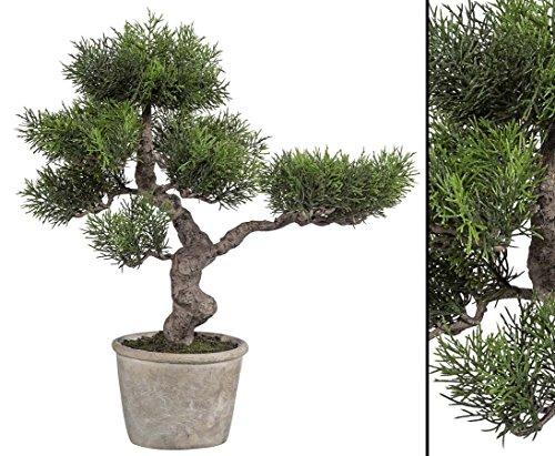 Zeder Bonsai Kunstbaum mit Zementtopf 40cm - künstlicher Bonsaibaum Kunstbonsai Dekopflanze