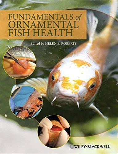 fundamentals-of-ornamental-fish-health