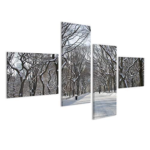 islandburner Bild Bilder auf Leinwand die schneebedeckten Bäume im Einkaufszentrum Bereich des Central Park in New York City Wandbild, Poster, Leinwandbild MMG