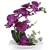 Bouquet d'orchidée artificielle True Holiday avec vase en porcelaine blanche, fleurs artificielles et plantes pour la décoration d'intérieur, fleurs en plastique, réalistes...