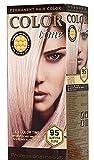 Color Time Haarfarbe Permanent, mit Gelée royale, 95 Hellrosa Blondine