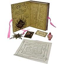 Noble Collection NN7431–Artefact Box Hermione Granger- Colección de réplicas de Harry Potter.