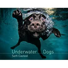 Underwater Dogs (English Edition)
