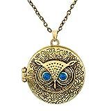 Große Eule Vogel Steampunk Medaillon Anhänger Halskette Gold mit Antiken Look and Feel von Pashal