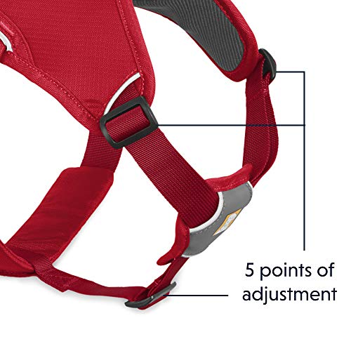Ruffwear Multi-Use Dog Harness, Rugged Environments, Working Dogs, Medium Breeds, Adjustable Fit, Size: Medium, Red Currant, Web Master Harness, 30102-615M