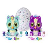 Hatchimals - 6044070 - HatchiBabies Ponette, Baby-Hatchimal mit interaktiven  Accessoires