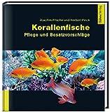 Korallenfische: Pflege und Besatzvorschläge