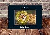 VERO PUZZLE 52426 Natur - Kastanie, 1000 Teile in hochwertiger, cellophanierter Puzzle-Schachtel