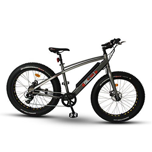 Fat Bike Electric Mountain Bike E-Bike 500 Watt