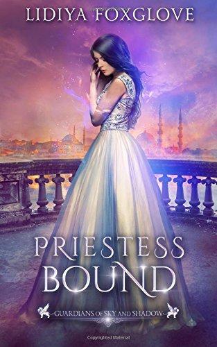 Priestess Bound: A Reverse Harem Fantasy: Volume 2 (Guardians of Sky and Shadow)
