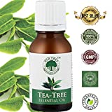 #2: Old Tree Tea Essential Oil for Skin, Hair and Acne Care, 15ml
