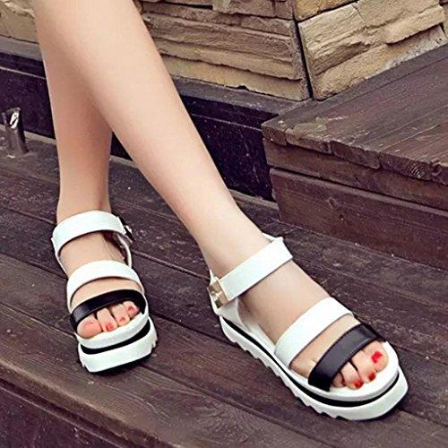 DM&Y 2017 version cor¨¦enne sort sauvage couleur muffin bas dames sandales t¨ºte de poisson de la mode boucle de sandales occasionnels White