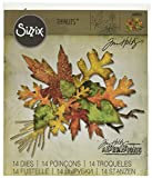 Sizzix 660955 Thinlits Sterben Set, Fall Foliage von Tim Holtz, 14/Pack