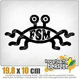 FSM 20 x 10 cm In 15 Farben - Neon + Chrom!JDM Sticker Aufkleber