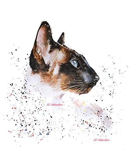 Siamesische Katze- Aquarell Drucken (30*40cm) -