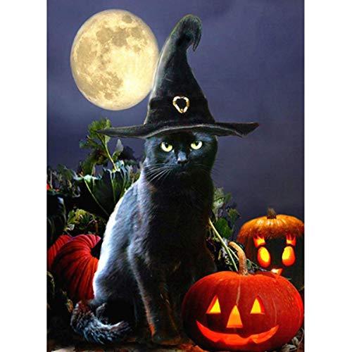 Leezeshaw 5D DIY Full Drill Diamant Gemälde nach Zahlen Kits Fameless Strass Stickerei Gemälde Bilder für Home Decor – Zauberer Katze 30X40cm Wizard Cat