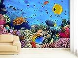 Fototapete Coral Field - weitere Größen und Materialien wählbar - DEUTSCHE PROFI QUALITÄT von Trendwände