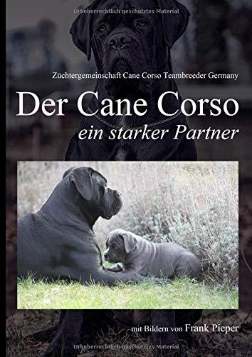 Cane Corso - ein starker Partner: mit Fotos von Frank Pieper