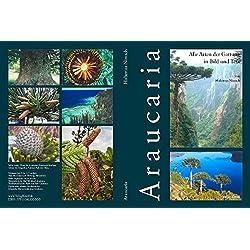 Araucaria – Alle Arten der Gattung in Bild und Text