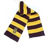 Sciarpa di Harry Potter con colori e stemmi specifici .