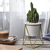 FOONEE vasi vasi di fiori sfusi, indoor piante in ceramica esagonale con struttura in ferro dorato, vasi per piante grasse, cactus White Pot Gold Bracket