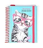 Grupo Erik Editores Studio Pets–Schülerkalender mit Spirale mit Motiv Katze, 15.5x 19cm