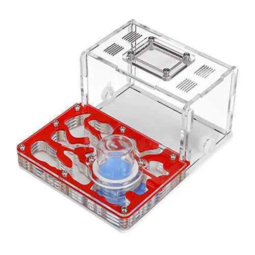 ChaRLes 16 Pcs 40MM klar Kristall Glas Griff Knöpfe für Tür Schublade Schrank Möbel - Glas Schrank Tür Schublade