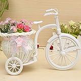 hensych Flower Beauty Rattan Dreirad Fahrrad Korb Vase Aufbewahrung Garten
