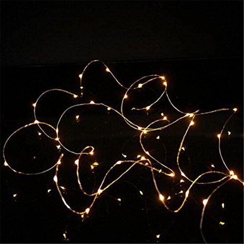 WINWINTOM 2M 20 LED-Mikro-Reis-Draht-kupferne feenhafte Schnur-Licht-Partei - Dvds Halloween-projektion