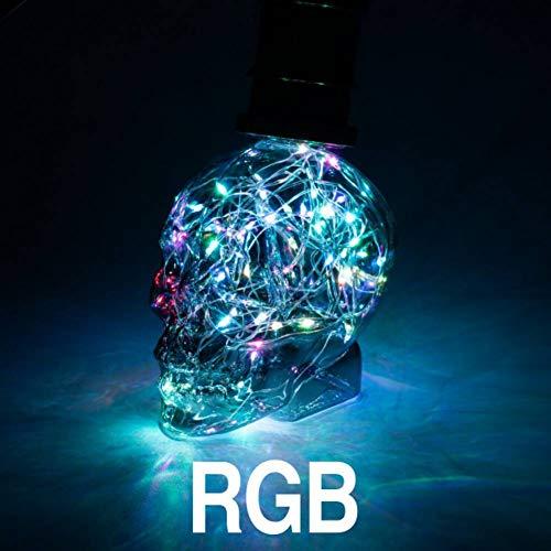 DPHK Glühbirne String Licht RGB Kupfer Seide Lampen Schädel AC 110 V 220 V Dekoration E27 Für Home Cafe Bar -