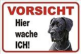 AdriLeo Schild Vorsicht deutsche Dogge Hier wache ich 15x20 oder 20x30 (20x30cm)