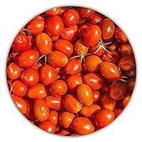 La tomate Miel du Mexique est une tomate cocktail rouge très productive. Son goût sucré en fait un fruit idéal pour le grignotage, très prisé comme tomate de balcon. Relativement résistante aux maladies fongiques, elle doit être protégée de la pluie....