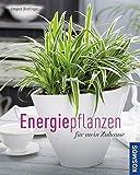 Energiepflanzen für mein Zuhause (Mein Garten)