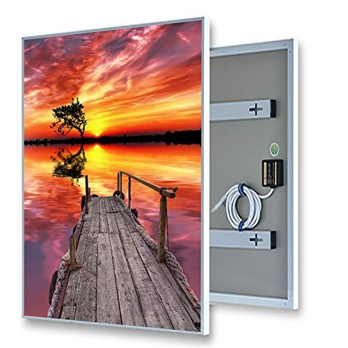 ColdFighting Geringer Rabatt 600 * 1000mm 600W Bild Fernes Infrarot -Panel Elektrische Heizung Wand Heizung (Fern-panel)