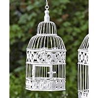 cage oiseau ancienne voir aussi les articles. Black Bedroom Furniture Sets. Home Design Ideas