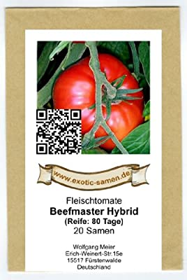 Rote Riesen-Fleischtomate - bis 1 kg schwer - Beefmaster Hybrid - 20 Samen von exotic-samen - Du und dein Garten