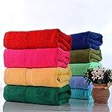 Freistehende oder wandmontierte Handtuchwärmer - 3